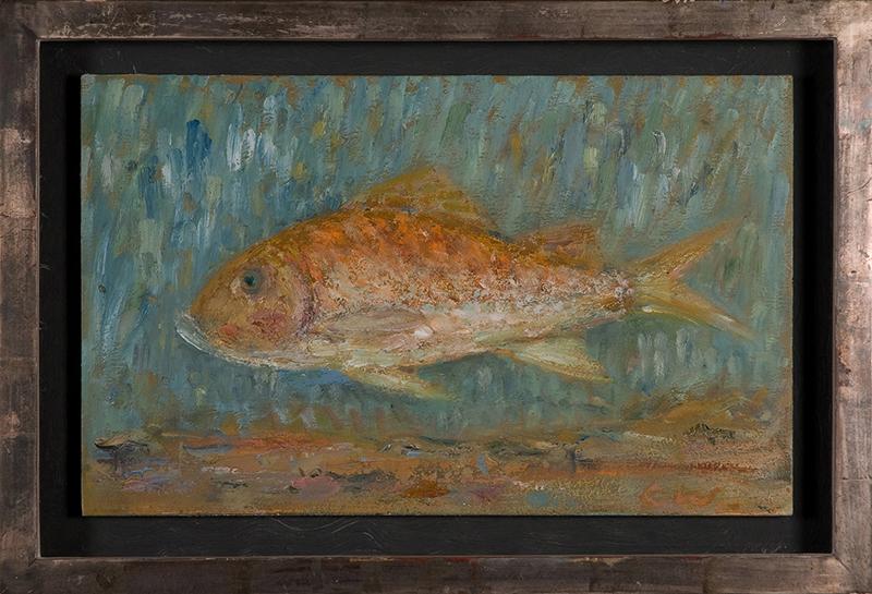 Golden Carp Goldigger (Framed)