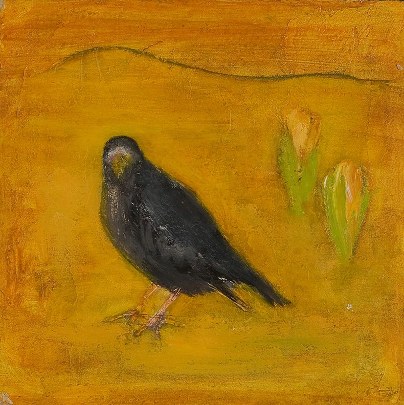 Crow & crocus by Colin Williams