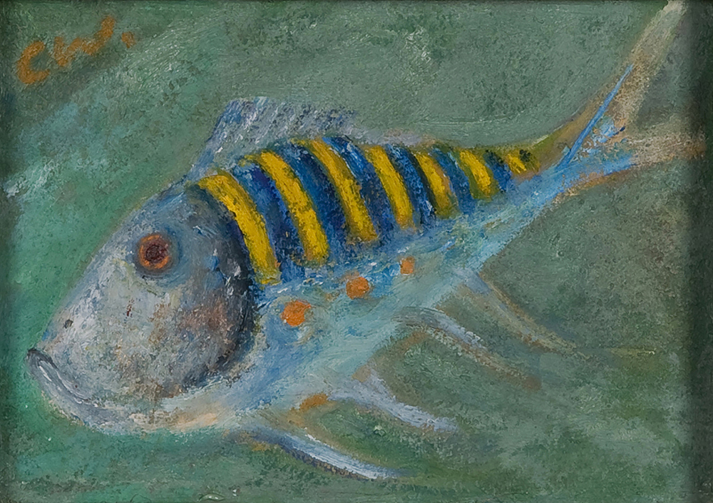 Tropical fish by Colin Williams